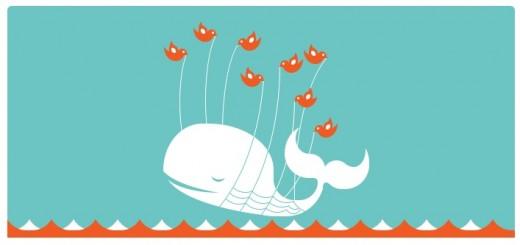 twitter-ballena